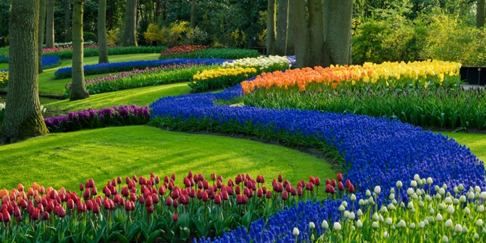 Prepare Your Landscaping for Spring!
